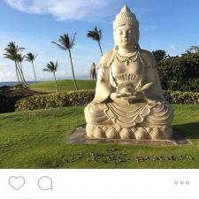 Experiential marketing: STA Travel image from Waikoloa Beach, Hawaii