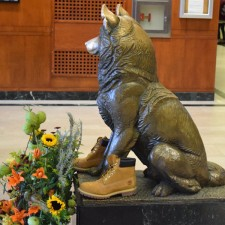 Even the mascot needs boots: college marketing